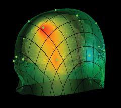 Discovery QEEG - Brain Avatar 4.0 LLP